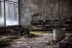 Black Bird of Chernobyl